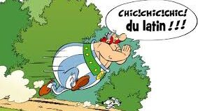 Chic du latin.jpg